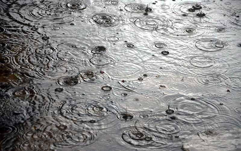 نگرانی از بارش زودهنگام باران در پاییز