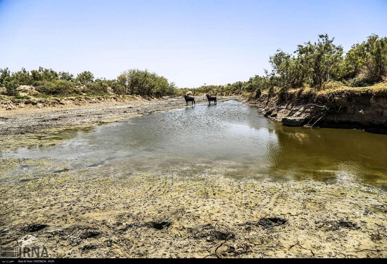 نگرانی تامین آب کشت تابستانه در حاشیه رودخانه کرخه