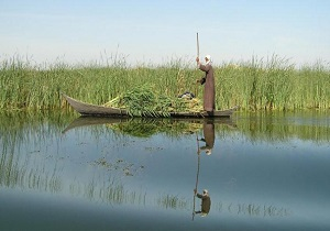 چرا دایک مرزی هورالعظیم پس از سیل خوزستان ترمیم نشد؟