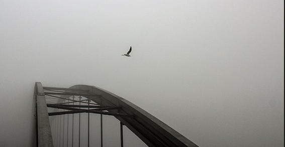 مه صبحگاهی اهواز را فرا گرفت