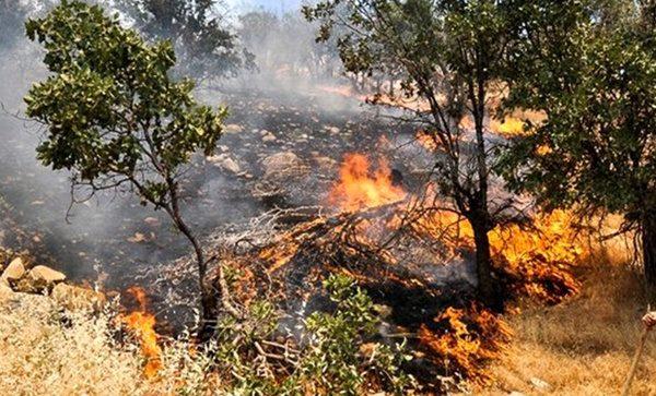 مهار آتش در اندیکا ادامه دارد/ در صورت اعلام نیاز، هماهنگی برای اعزام بالگرد صورت میگیرد