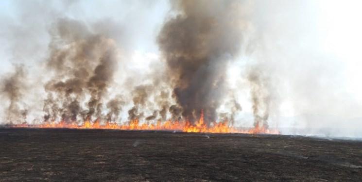 پایان آتشسوزی در تالاب میانگران ایذه