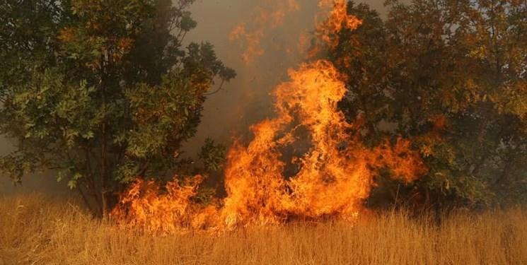 پایان شعلههای آتش در اراضی تالاب میانگران