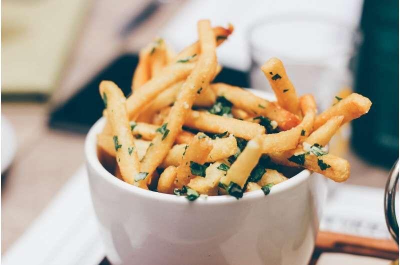 مصرف غذاهای سرخشده عامل بروز بیماری قلبی و سکته مغزی